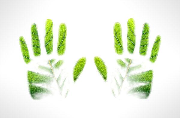 Green handprints