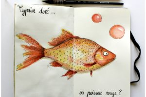 Cyprin doré ou poisson rouge ?