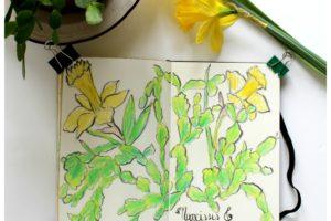Narcisses et Cactus