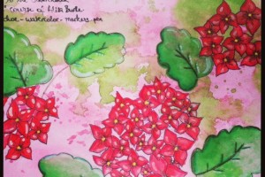 Art Journal#6 et Gribouillis